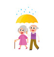 grey-haired couple walks keeping umbrella vector image