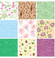 flowers and butterflies on seamless patterns vector image