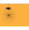spider in the web vector image vector image