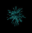 firework explosion isolated on black background vector image