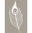 White peacock Feather vector image vector image