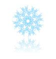 beautiful snowflake vector image