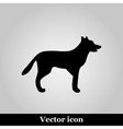Dog icon on grey background vector image