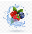 splash of fresh mixed forest berries realistic vector image