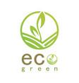 green eco logo vector image