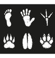 Human foot print and animal footprint vector image vector image