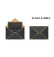 isolated opened and closed black and gold vector image