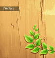 fresh green leaf on wood background vector image vector image