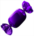 candy in a wrapper vector image