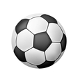 Isolated Realistic Soccer Ball vector image