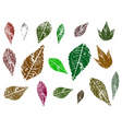 leaves graphic elements vector image vector image