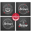 Spring Typography Background Set on Chalkboard vector image