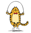 Cat jumps on the rope vector image vector image