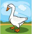 Goose bird farm animal cartoon vector image