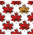 seamless pattern with maple leaves of red color vector image