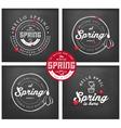 Spring Typography Background Set on Chalkboard vector image