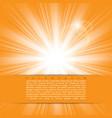bright sunlight vector image
