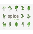 Greenery icon set Vegetable green leaves vector image