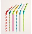 Drinking Straws vector image