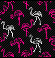 black and pink striped flamingo bird pattern vector image vector image