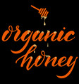 hand drawn lettering organic honey elegant modern vector image