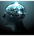 Active Human Brain vector image