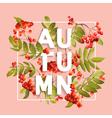 Rowanberry Floral Background Autumn Design vector image