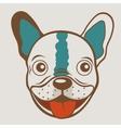 French bulldog funny face vector image