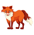 Red fox standing on white background vector image vector image