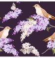 Seamless lilac and birds vector image