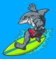 cartoon surfing shark vector image