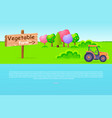 vegetable farm pointer with trees and tractor vector image