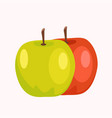 red and green apples isolated on white background vector image