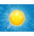 Sunny Shiny Background vector image