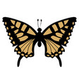 swallowtail vector image vector image