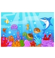 Sea life cartoon with fish collection set vector image