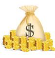 Gold coin with bag of money vector image