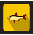 Rudd fish icon in flat style vector image