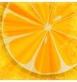 Orange fruit background vector image