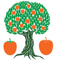Persimmon tree vector image