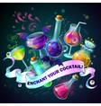 Magic Bottles Composition vector image