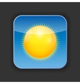 Sunny Shiny Button vector image