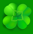 shamrock trefoil or clover leaf irish symbol vector image
