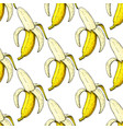 banana seamless pattern isolated hand vector image