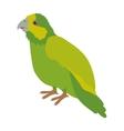 silhouette green parrot animal bird vector image