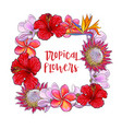 square frame of tropical flowers and palm leaves vector image vector image