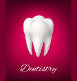 3d white tooth for dentistry poster vector image