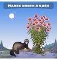 Harek under a bush vector image