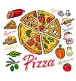 color pizza vector image