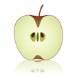 half of apple vector image vector image